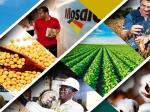 Vale Fertilizantes é vendida para Mosaic